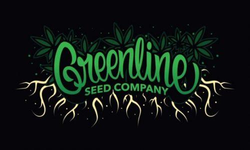 Greenline Organics Archives » The British Seed Company